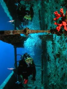 ספארי צלילה בסיני אל הטיסלגורם