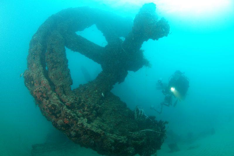 ספינת הבוטנים ביפו