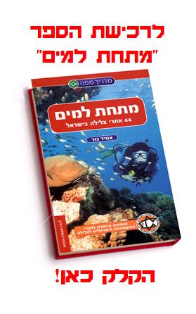 44 אתרי צלילה