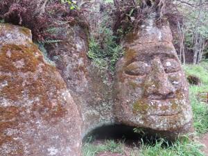 פנים באבן באי פלוראנה