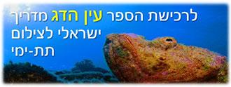 לרכישת עין הדג מדריך ישראלי לצילום תת-ימי